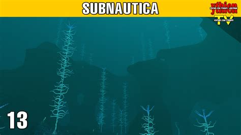 Subnautica EARLY ACCESS E13 - Blood Kelp Forest - YouTube